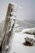 Winter on the Razorback, Mt Feathertop, Victoria, Australia