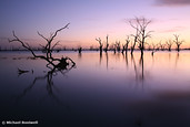 Lake Victoria Pre-Dawn, New South Wales, Australia