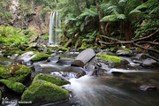 Hopetoun Falls, Otways, Great Ocean Road, Victoria, Australia