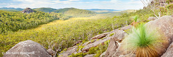 Dandahra Crags, Gibraltar Range National Park, New South Wales, Australia