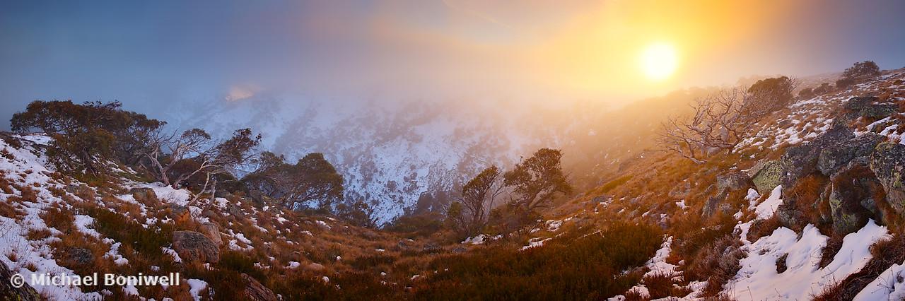 Foggy Dawn, Mt Howitt, Victoria, Australia