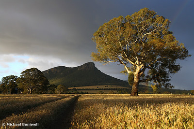Wild light baths the Grampians, Dunkeld, Victoria, Australia