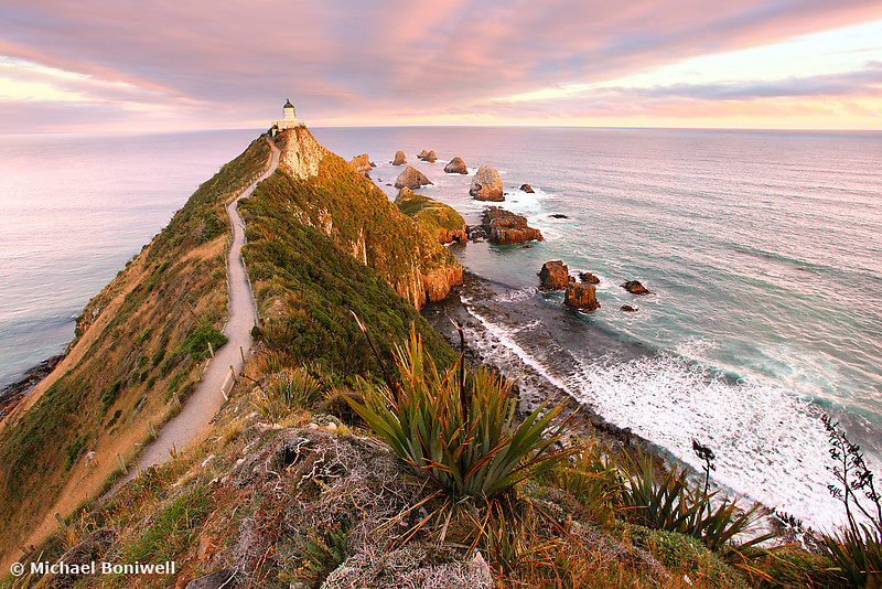 Nugget Point, South Island, New Zealand