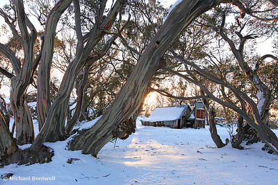 Wallace Hut Dawn, Falls Creek, Victoria, Australia