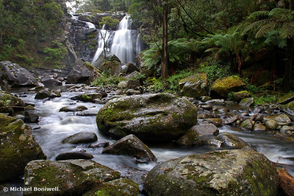 Stevensons Falls, Otways National Park, Victoria, Australia