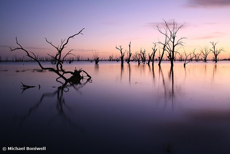 Lake Victoria Pre-Dawn, New South Wales, Australia