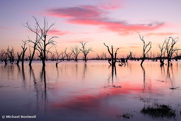 Lake Victoria Dawn, New South Wales, Australia