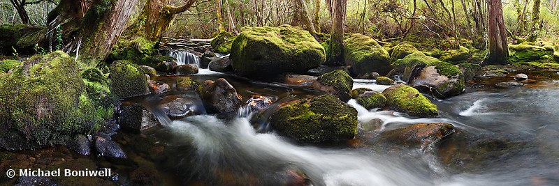 Pine Valley Stream, Lake St Clair National Park, Tasmania, Australia