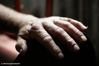 Shearer's Hand