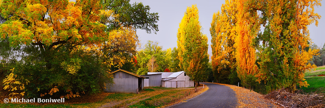 Country Lane, Tumut, New South Wales, Australia