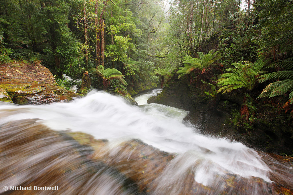 Liffey River, Tasmania, Australia