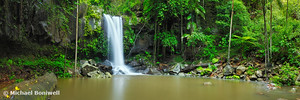 Curtis Falls, Tamborine National Park, Queensland, Australia