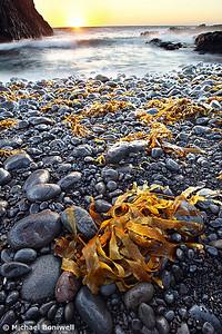 Cape Schank, Mornington Peninsula, Victoria, Australia
