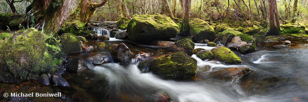 Pine Valley Stream, Lake St Clair National Park, Tasmania, Australia