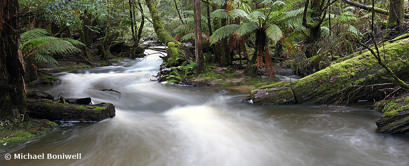 Russell Creek, Tasmania, Australia