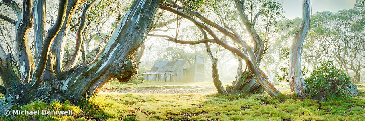 Foggy Wallace Hut, Falls Creek, Victoria, Australia