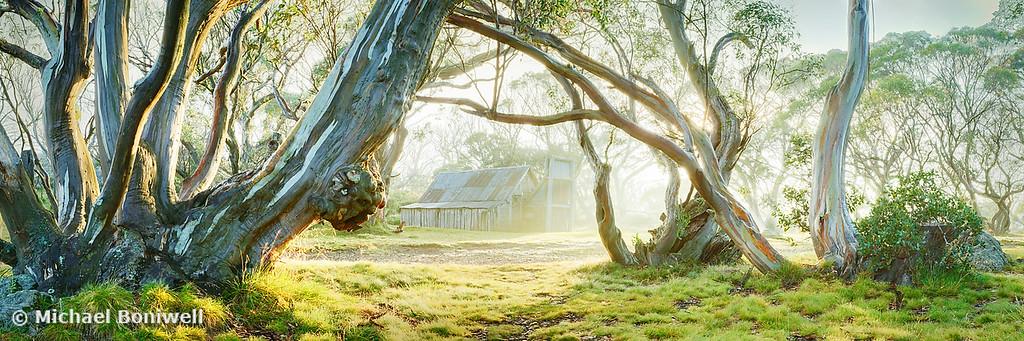 Foggy Wallace Hut, Falls Creek, Victoria, Australia