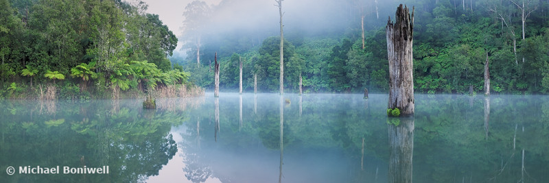 Lake Elizabeth, Great Otway National Park, Victoria, Australia