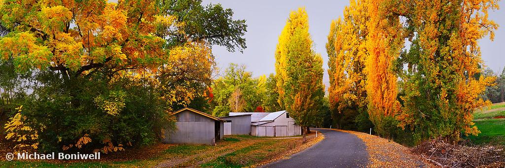 Country Lane, Tumut, New South Wales, Australia