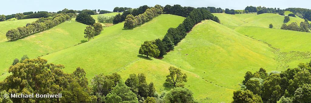 Rolling Green Hills, Gippsland, Victoria, Australia