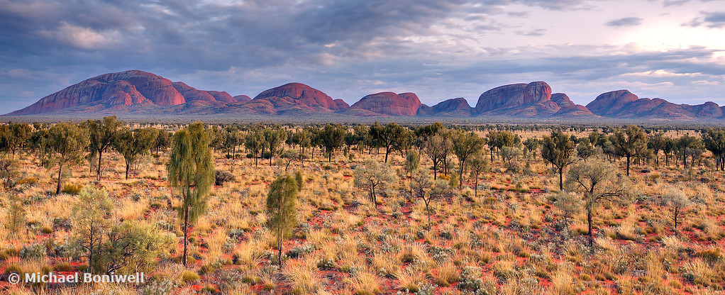 Kata Tjuta (The Olgas), Dawn, Northern Territory, Australia